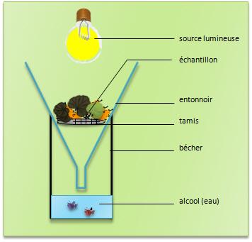 milieux aquatiques définition